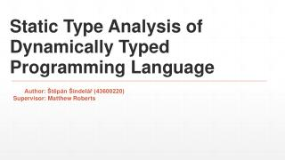 Static Type Analysis of Dynamically Typed Programming Language