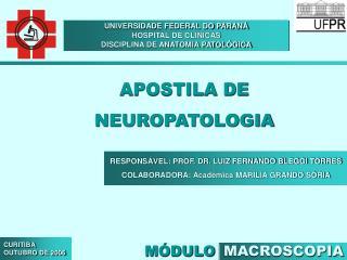 UNIVERSIDADE FEDERAL DO PARANÁ HOSPITAL DE CLÍNICAS DISCIPLINA DE ANATOMIA PATOLÓGICA