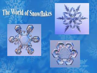 The World of Snowflakes