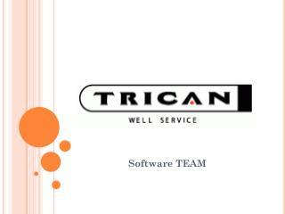 Software TEAM