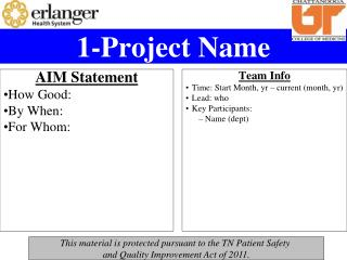 1-Project Name