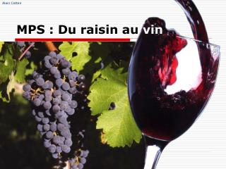 MPS : Du raisin au  vin