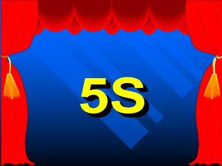 5S - Cinco Sensos