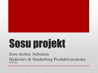 Sosu projekt