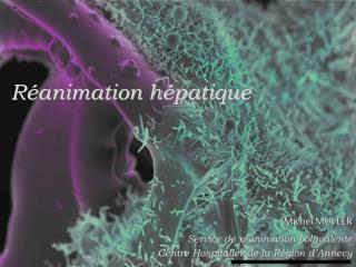 R animation h patique