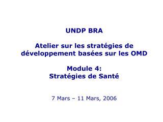 UNDP BRA  Atelier  sur les stratégies de développement basées sur les OMD Module 4: