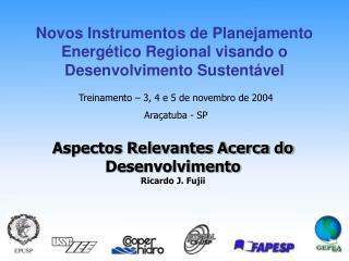 Novos Instrumentos de Planejamento Energético Regional visando o Desenvolvimento Sustentável