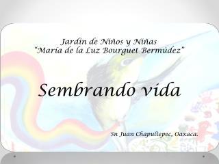 """Jardín  de Niños y Niñas """"María de la Luz Bourguet  Bermúdez """" Sembrando vida"""