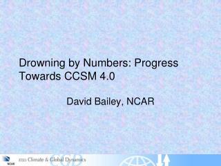 Drowning by Numbers: Progress Towards CCSM 4.0