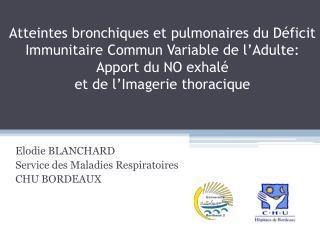 Atteintes bronchiques et pulmonaires du D ficit Immunitaire Commun Variable de l Adulte: Apport du NO exhal   et de l Im