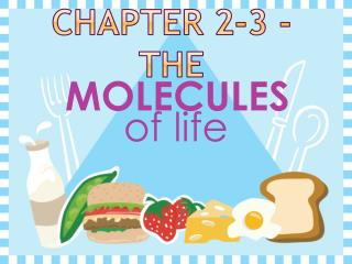 Chapter 2-3 - the