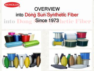 OVERVIEW  into  Dong Sun Synthetic Fiber