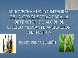 RODDY PEÑAFIEL LEÓN