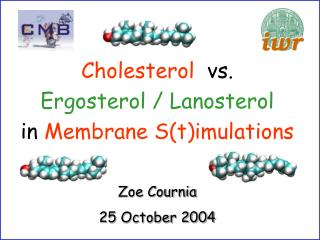 Zoe Cournia 25 October 2004