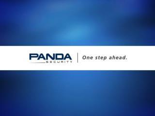 PANDA BUSINESS PARTNER 2010