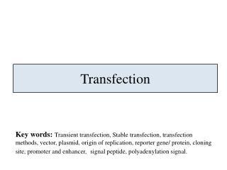 Transfection