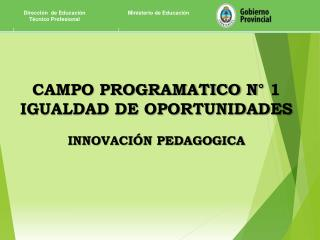 CAMPO PROGRAMATICO N° 1 IGUALDAD DE OPORTUNIDADES INNOVACIÓN PEDAGOGICA