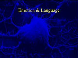 Emotion  Language