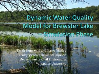 Dynamic Water Quality  Model for Brewster Lake  – Simulation Phase