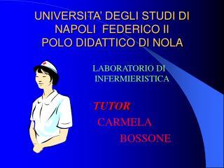 UNIVERSITA  DEGLI STUDI DI NAPOLI  FEDERICO II POLO DIDATTICO DI NOLA