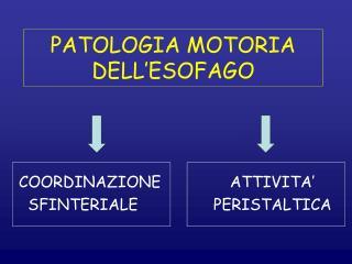 PATOLOGIA MOTORIA DELL'ESOFAGO