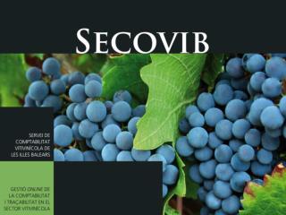 Servei de comptabilitat vitivin�cola de les Illes Balears