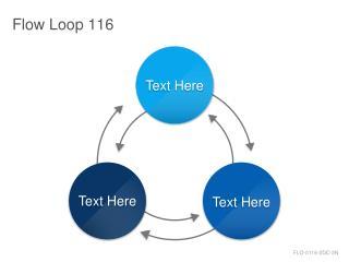 Flow Loop 116
