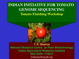 INDIAN INITIATIVE FOR TOMATO  GENOME SEQUENCING Tomato Finishing Workshop