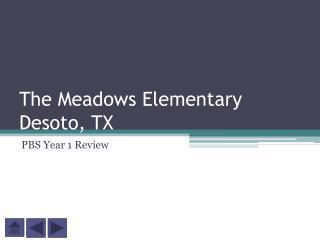The Meadows Elementary Desoto, TX