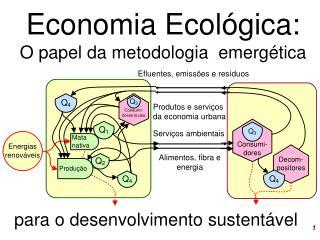 Economia Ecol�gica: O papel da metodologia  emerg�tica