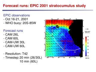 Forecast runs: EPIC 2001 stratocumulus study