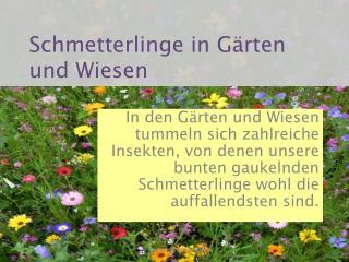 Schmetterlinge in Gärten und Wiesen