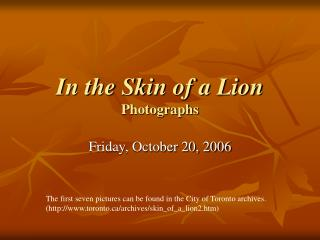 In the Skin of a Lion Photographs