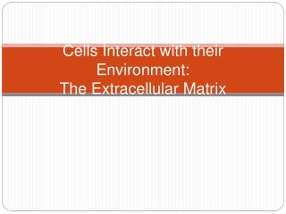 Cells Interact with their Environment: The Extracellular Matrix