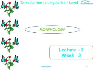 Lecture -3 Week  3