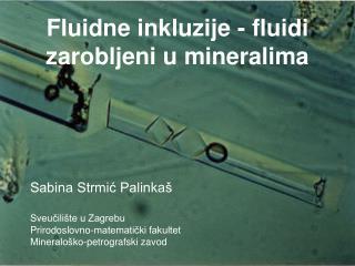 Fluidne inkluzije - fluidi zarobljeni u mineralima