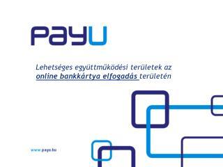 Lehetséges együttműködési területek az  online  bankkártya elfogadás  területén