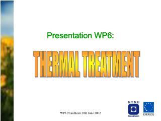 Presentation WP6: