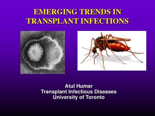 EMERGING TRENDS IN TRANSPLANT INFECTIONS