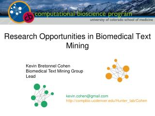 Research Opportunities in Biomedical Text Mining