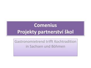 Comenius Projekty partnerství škol