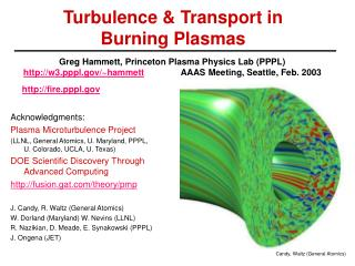 Turbulence & Transport in  Burning Plasmas