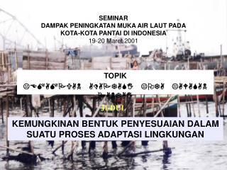 SEMINAR DAMPAK PENINGKATAN MUKA AIR LAUT PADA  KOTA-KOTA PANTAI DI INDONESIA 19-20 Maret 2001