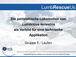 Lumb Rescue Us