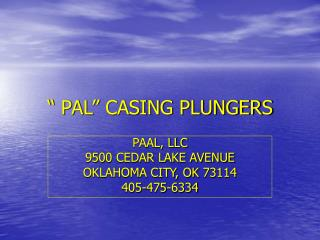 """ PAL"" CASING PLUNGERS"