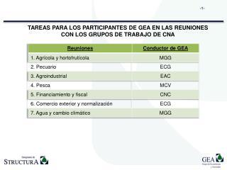 TAREAS PARA LOS PARTICIPANTES DE GEA EN LAS REUNIONES CON LOS GRUPOS DE TRABAJO DE CNA