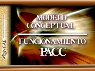 MODELO CONCEPTUAL  PLAN ANUAL DE COMPRAS Y CONTRATACIONES