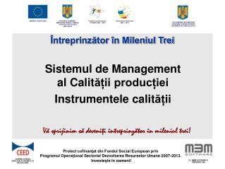 Sistemul de Management al Calitaii produciei Instrumentele calitaii