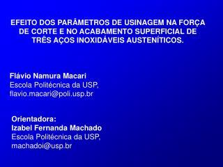 Orientadora: Izabel Fernanda Machado Escola Politécnica da USP,  machadoi@usp.br