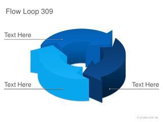 Flow Loop 309